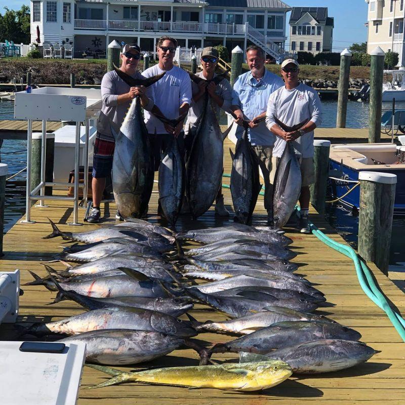 Nice-haul-today-@oceancitymarlinclub-@biggamefishingjournal-@bdoutdoorsdotcom.xxoh20a006ee1c20a3b83f99149744ce7f7coe5F130713.jpeg