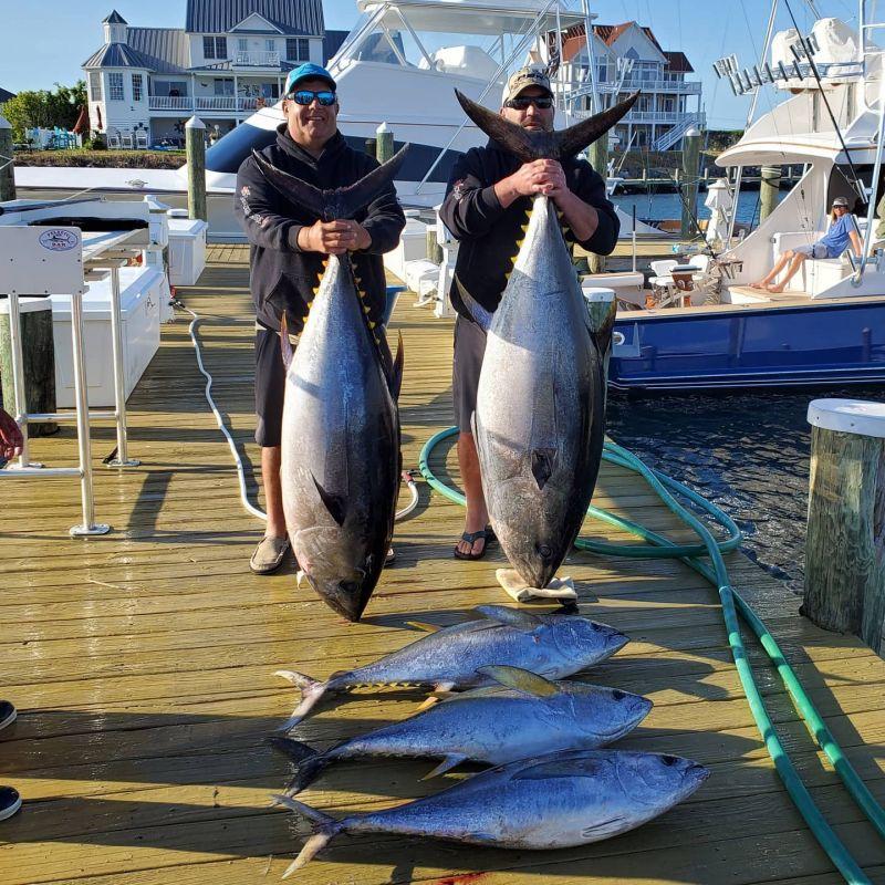 Tuna-fishing-was-a-bit-slower-but-we-were-rewarded.xxoh4daad65105c24905c532aebe929fd2a2oe5F0C9991.jpeg