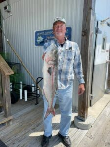 Could this be the start of the big bluefish frenzy? (Could this be the start of the big bluefish frenzy? C.J.  Rickards caught this …)