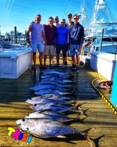 Yellowfin Tuna Great day to fish (Yellowfin Tuna  Great day to fish)