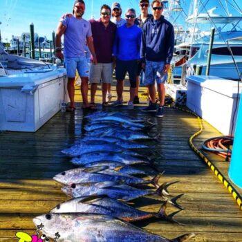Yellowfin Tuna Great day to fish