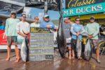 Big Fish Classic – (Big Fish Classic –)