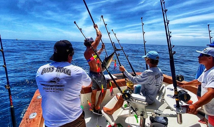 Catch of the dayYellowfin Tuna #blackwellboatworks #sportfishing #shimanoreels...