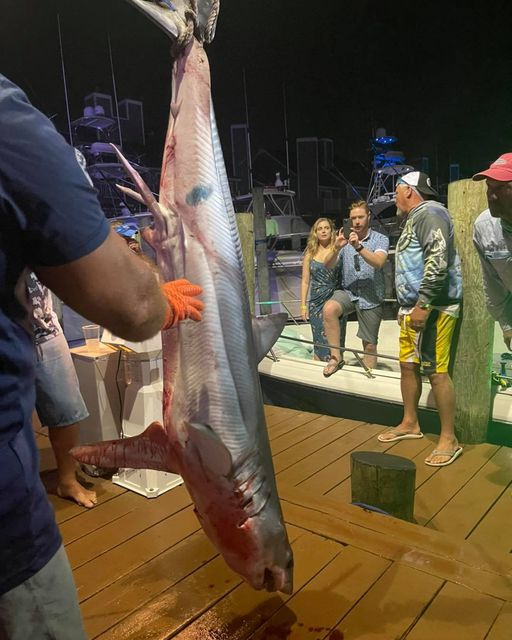 2nd Place Shark and the last fish to be weighed