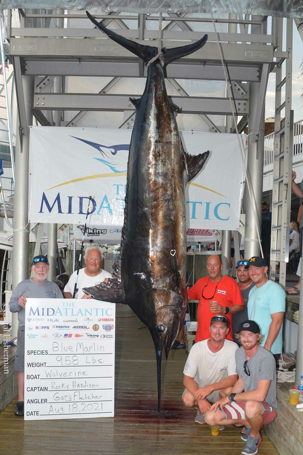 Day Three Updates from Sunset Marina, Ocean City, MD. Scales