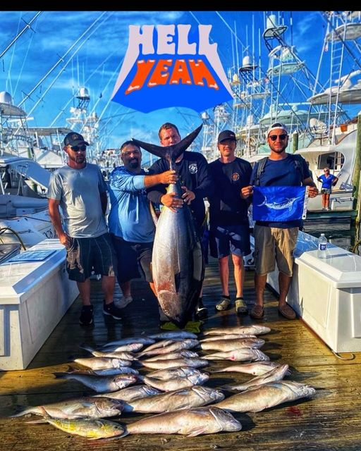 205 lb Big Eye Tuna a bunch of Tilefish, a